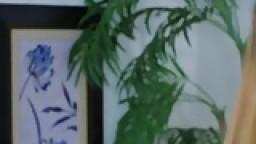 بورن سكس أجنبي ثلاثي في صالة الالعاب الرياضية-بورن سكس عربي