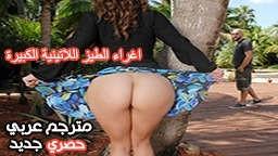 الإستوائية - أفلام سكس حصرية عربي مجانا | أفلام سكس بورن عربية